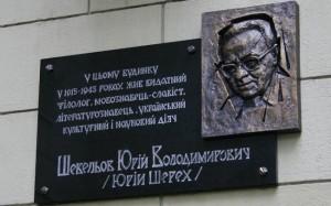 sheveljov-kharkiv-33