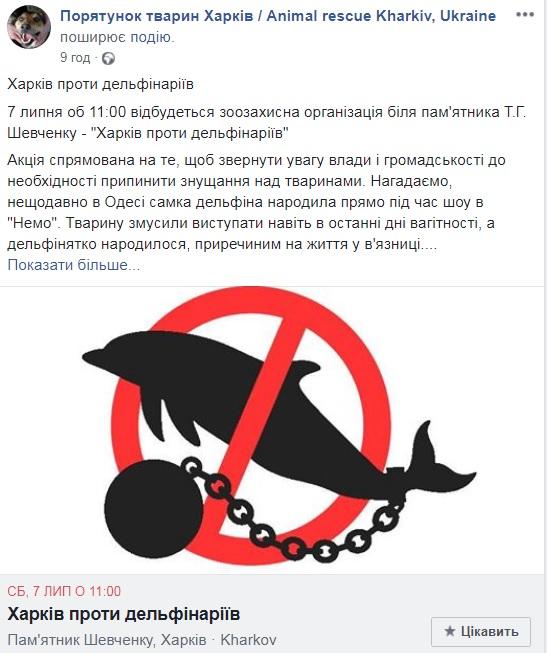 СПТ - акція проти дельфінарієв